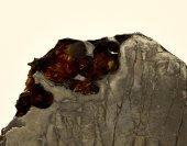 Minerál PALLASIT SEYMCHAN
