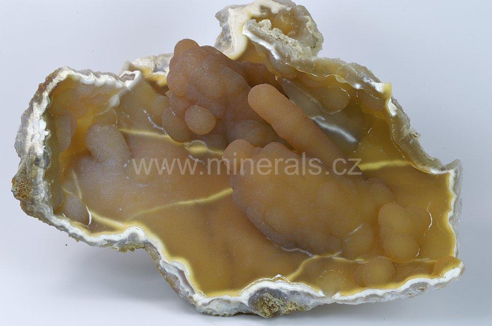 Minerál FOSILNÍ KORÁL, CHALCEDON