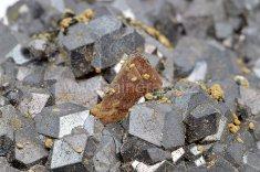 Minerál HELVIN, MAGNETIT